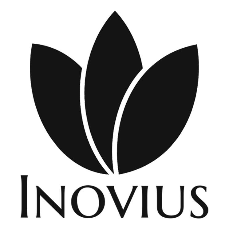 www.inovius.ro