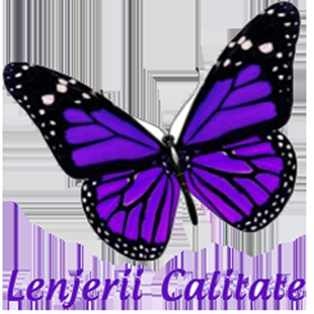 www.lenjerii-calitate.ro